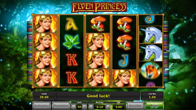 Характеристики слота Elven Princess 10