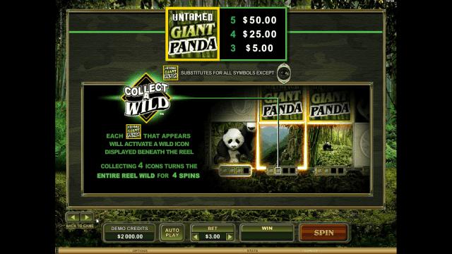 Бонусная игра Untamed Giant Panda 3