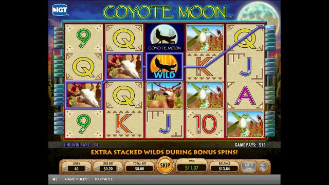 Бонусная игра Coyote Moon 8