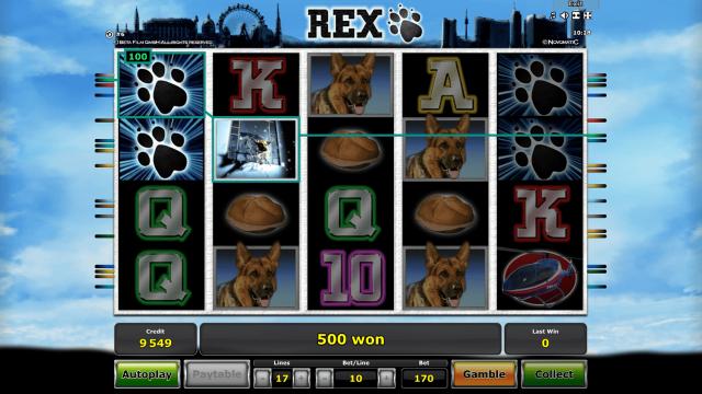 Бонусная игра Rex 4