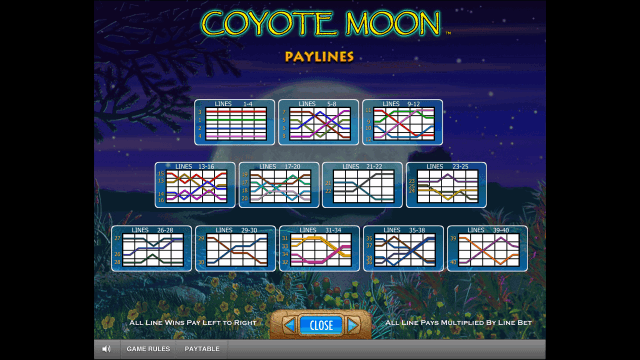 Характеристики слота Coyote Moon 7