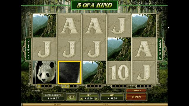 Бонусная игра Untamed Giant Panda 10