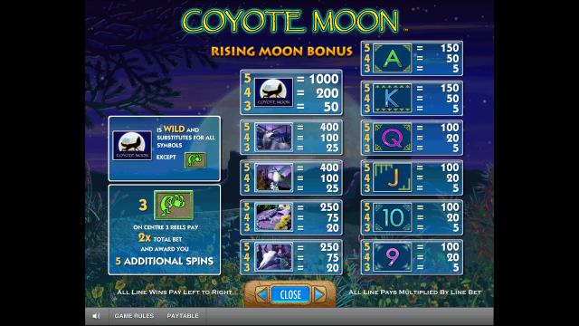 Игровой интерфейс Coyote Moon 6