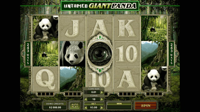 Характеристики слота Untamed Giant Panda 2