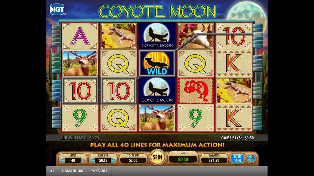 Бонусная игра Coyote Moon 4