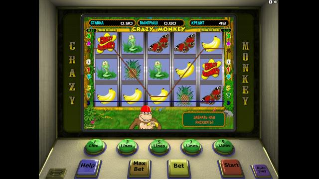 Игровой интерфейс Crazy Monkey 3