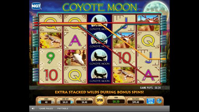 Характеристики слота Coyote Moon 2