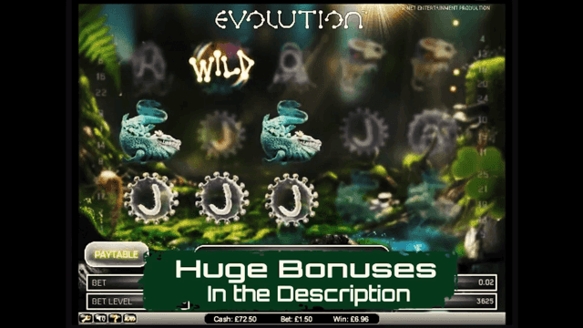 Характеристики слота Evolution 2