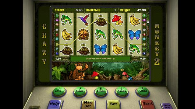 Бонусная игра Crazy Monkey 2 10