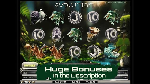 Характеристики слота Evolution 1