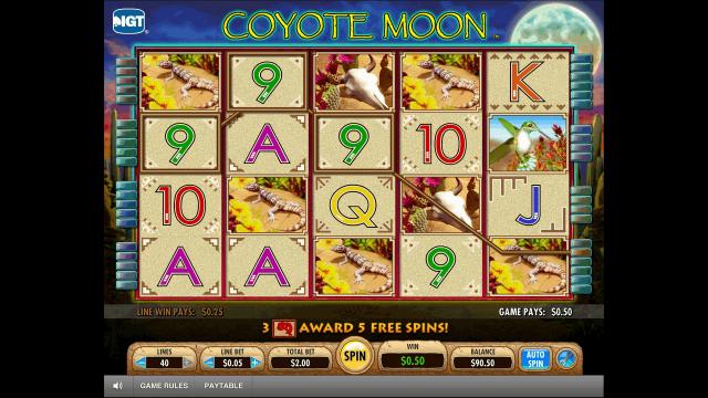 Характеристики слота Coyote Moon 10